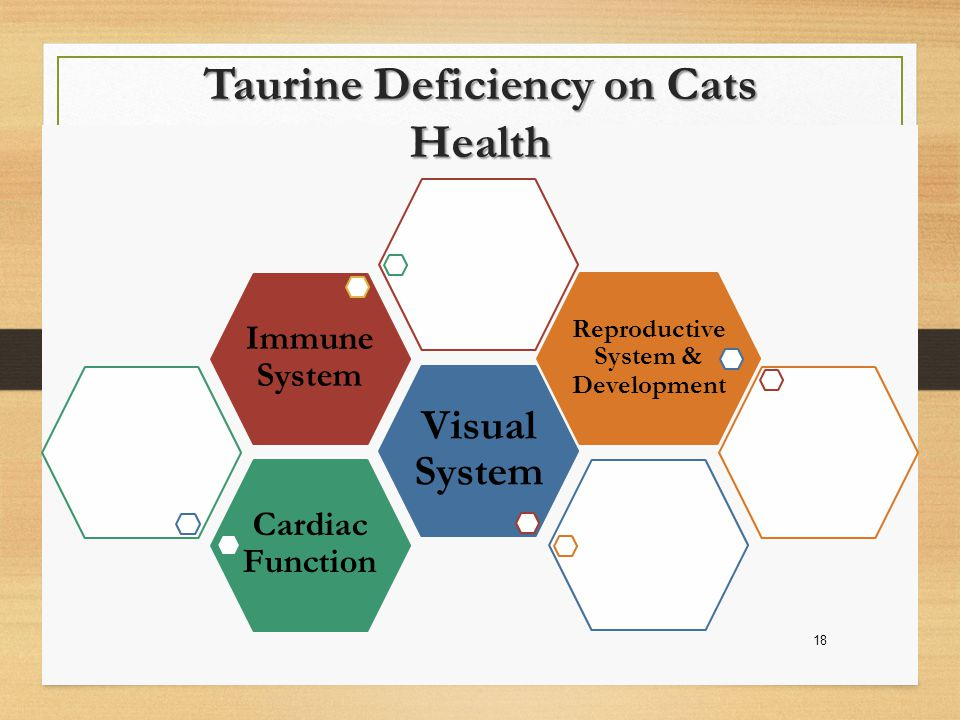 Taurine Deficiency on Cats Health