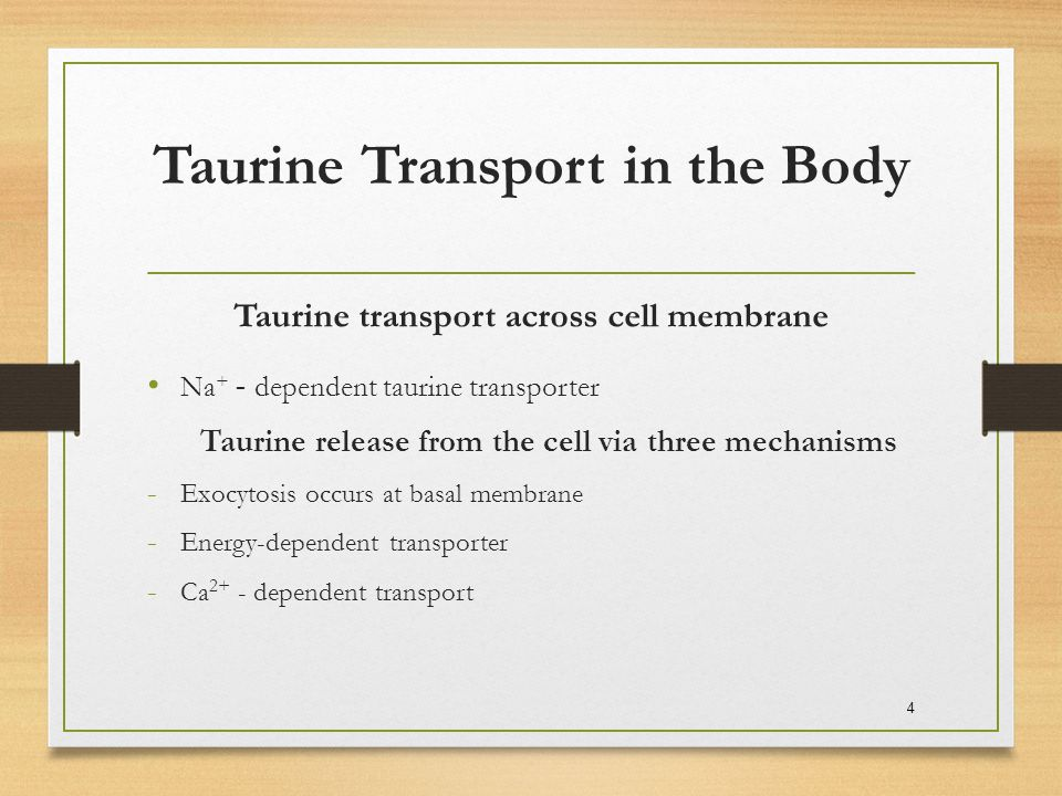 Taurine Transport in the Body