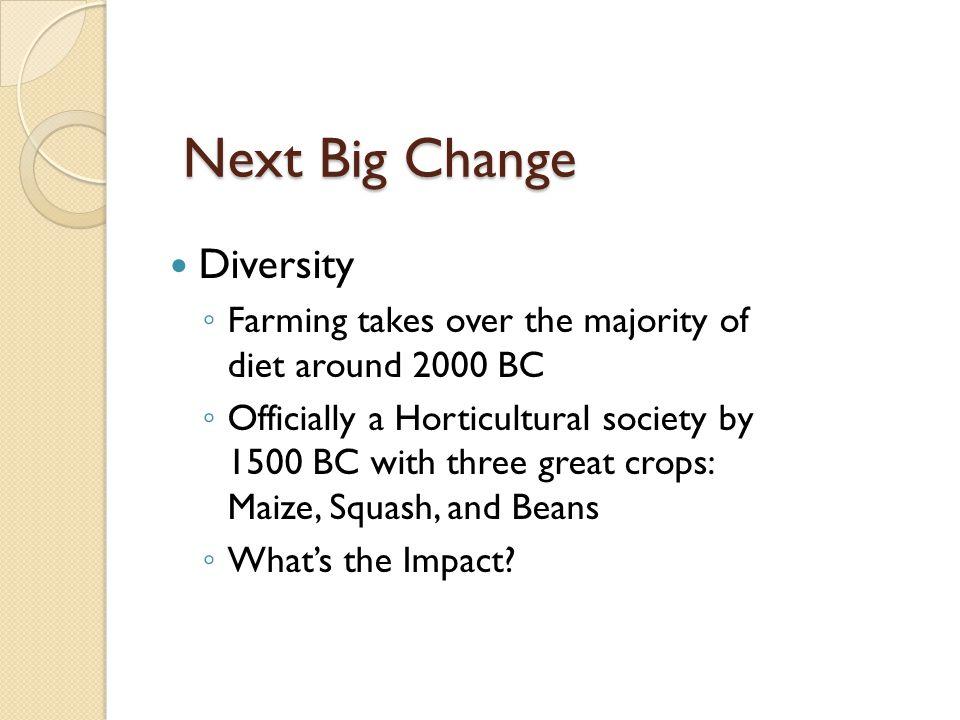 Next Big Change Diversity