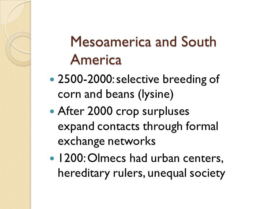 Mesoamerica and South America