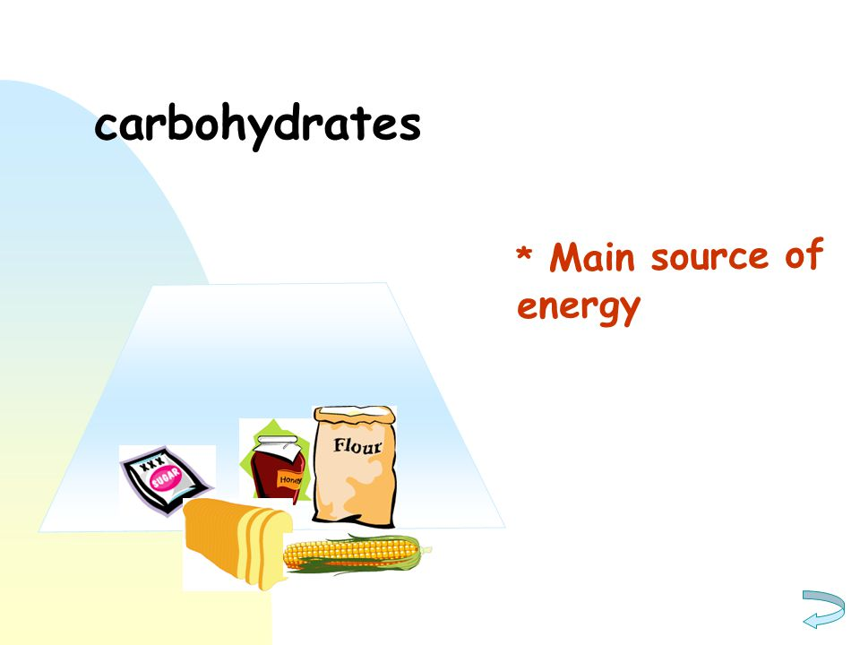 carbohydrates * Main source of energy