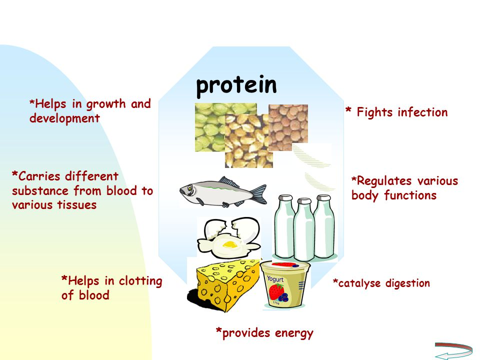 protein * Fights infection