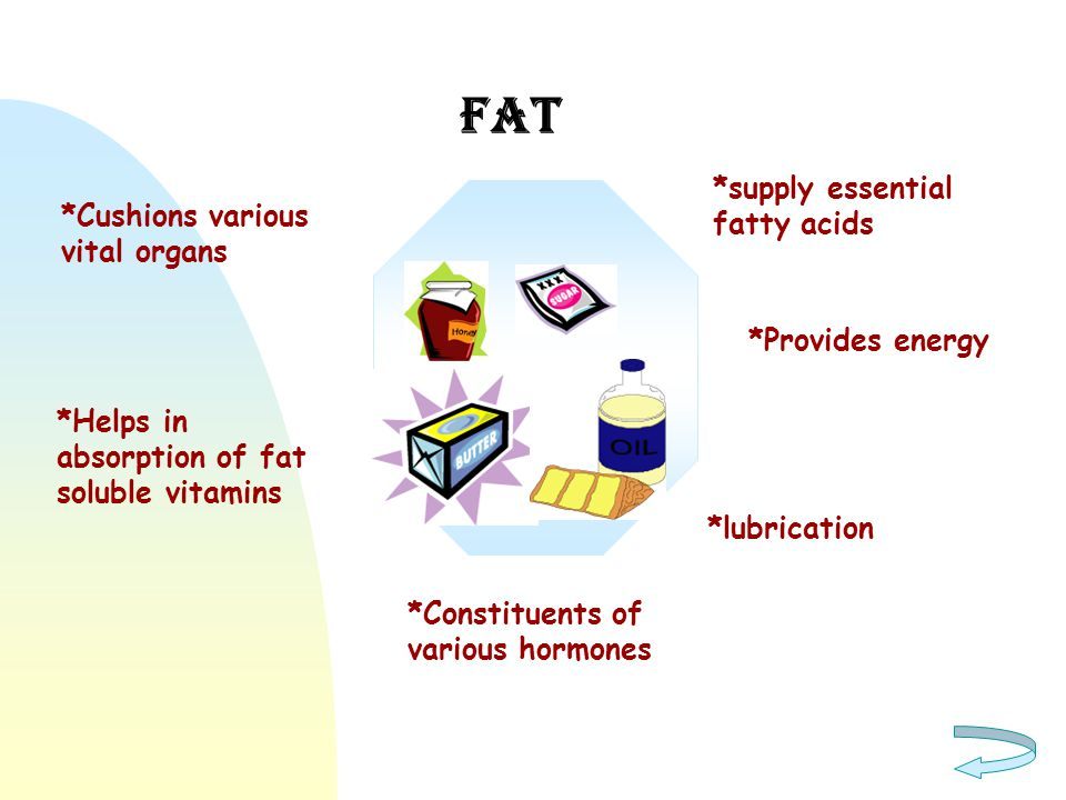 fat *supply essential fatty acids *Cushions various vital organs