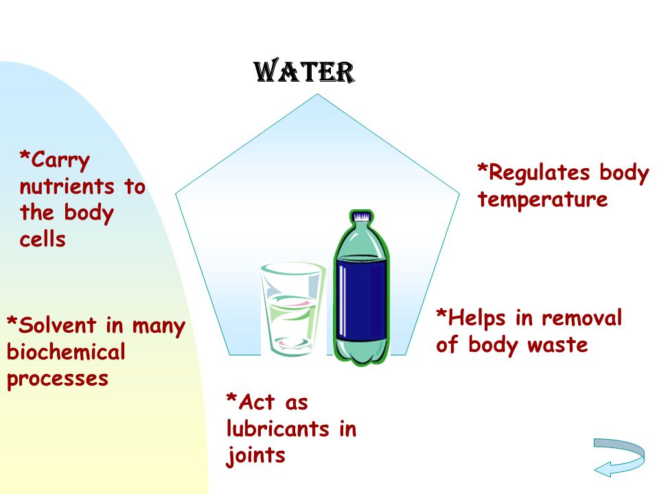 Water *Carry nutrients to the body cells *Regulates body temperature