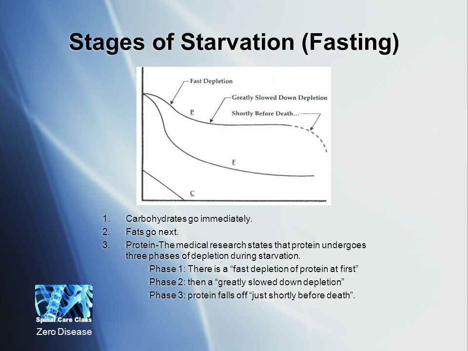Stages of Starvation (Fasting)