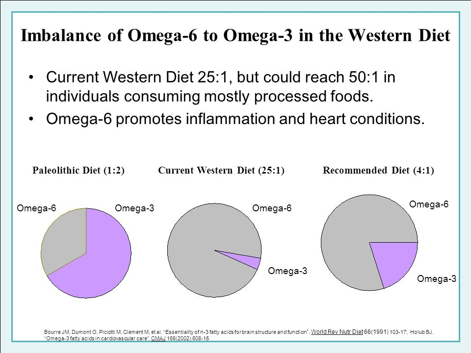 Imbalance of Omega-6 to Omega-3 in the Western Diet