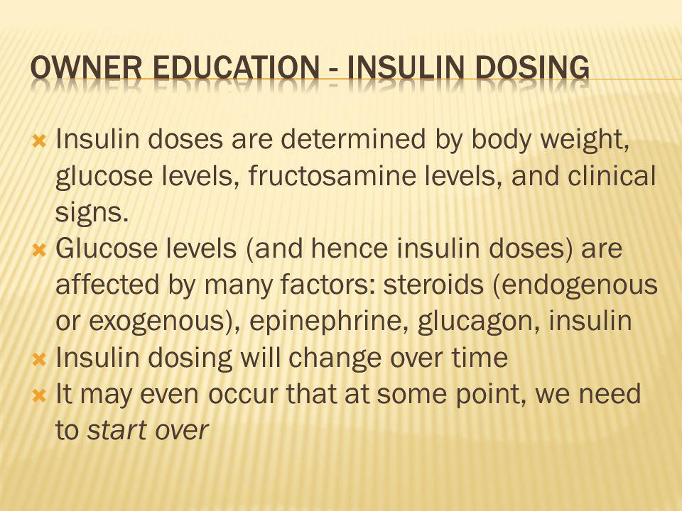 Owner education - Insulin dosing
