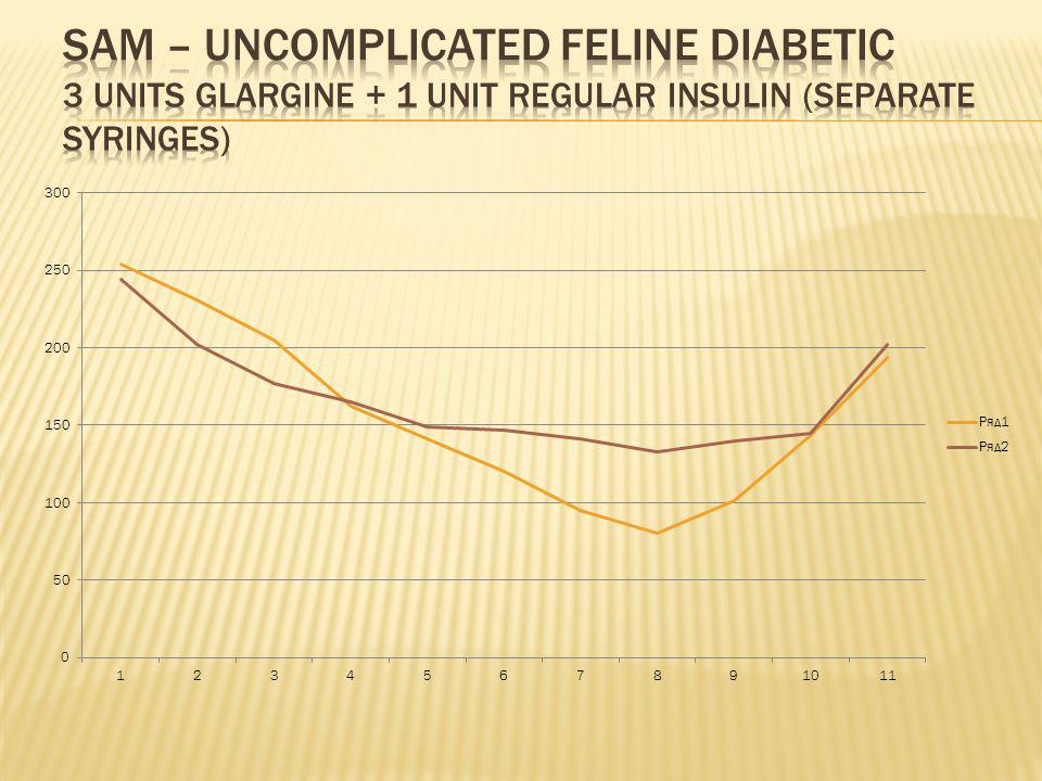 Sam – uncomplicated feline diabetic 3 units glargine + 1 unit regular insulin (separate syringes)