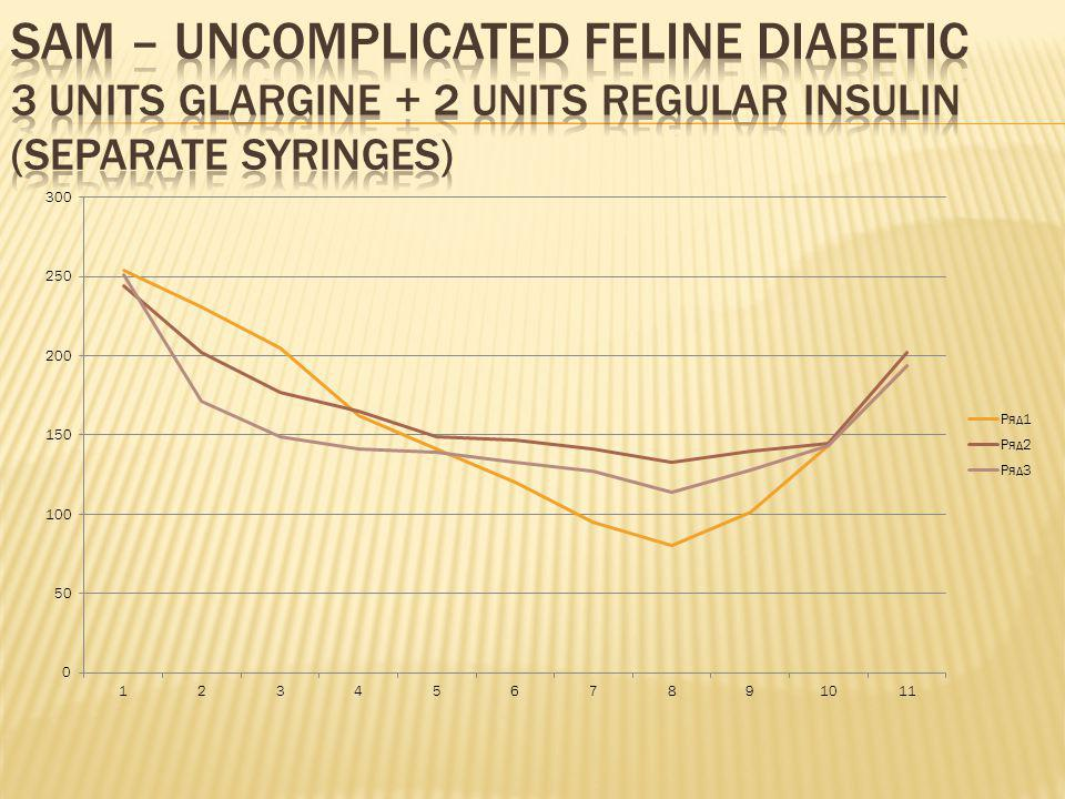 Sam – uncomplicated feline diabetic 3 units glargine + 2 units regular insulin (separate syringes)
