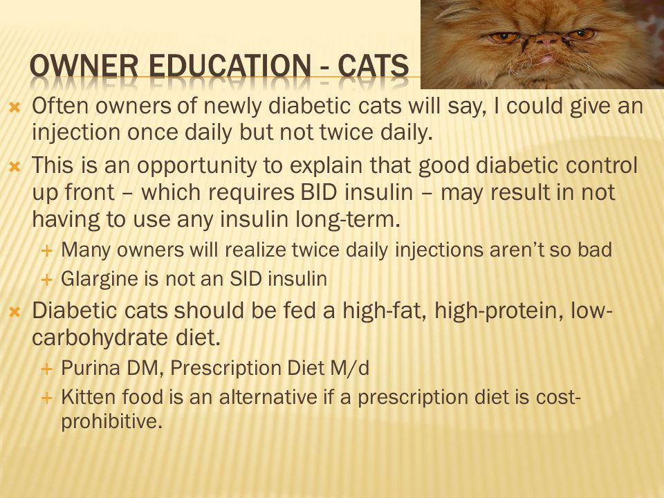 Owner education - cats Often owners of newly diabetic cats will say, I could give an injection once daily but not twice daily.