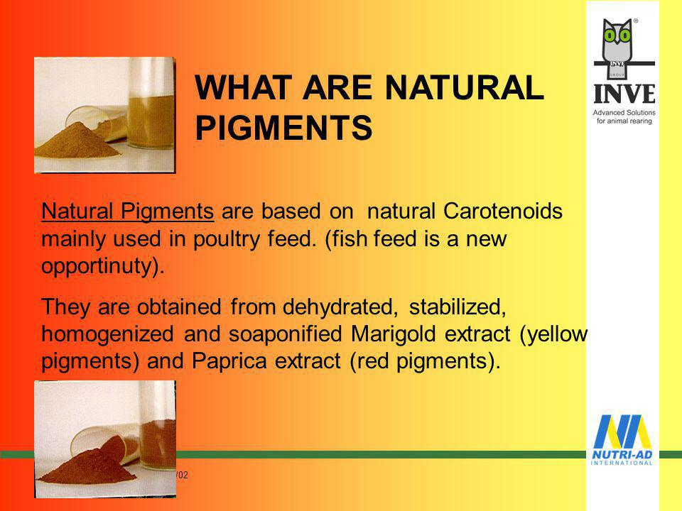 WHAT ARE NATURAL PIGMENTS