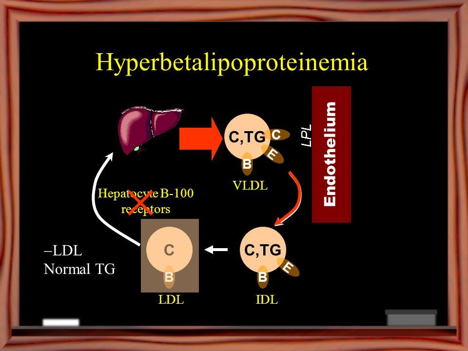 Hyperbetalipoproteinemia