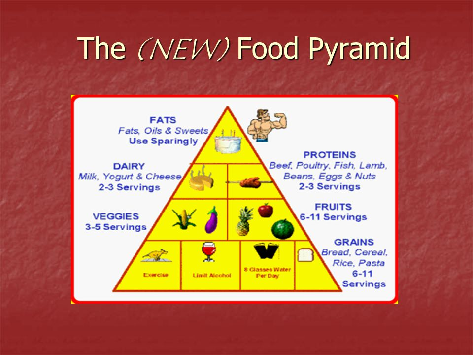 The (NEW) Food Pyramid