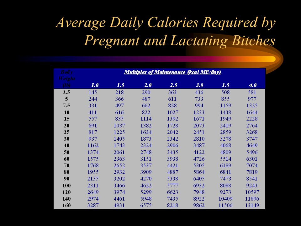 Average Daily Calories Required by Pregnant and Lactating Bitches