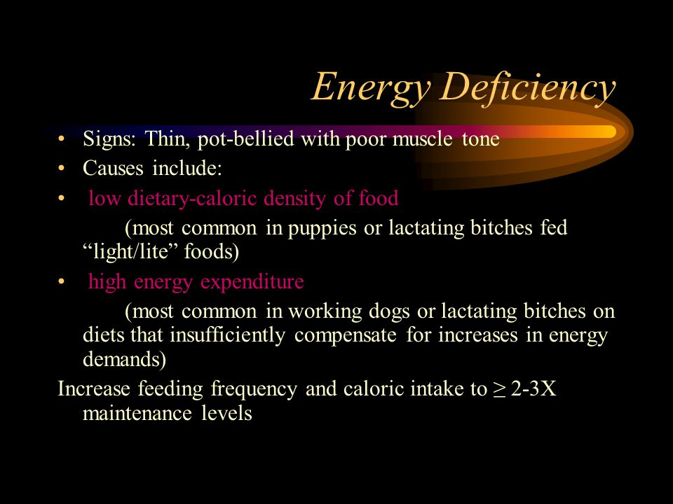 Energy Deficiency Signs: Thin, pot-bellied with poor muscle tone