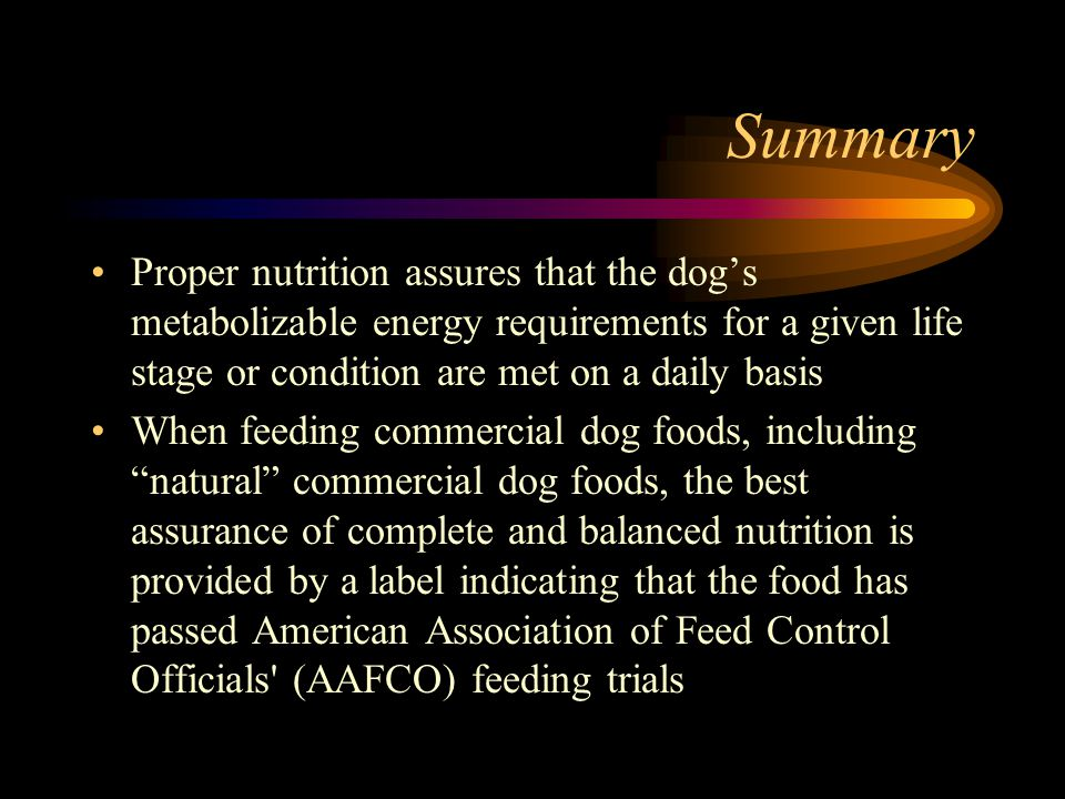 Summary Proper nutrition assures that the dog's metabolizable energy requirements for a given life stage or condition are met on a daily basis.