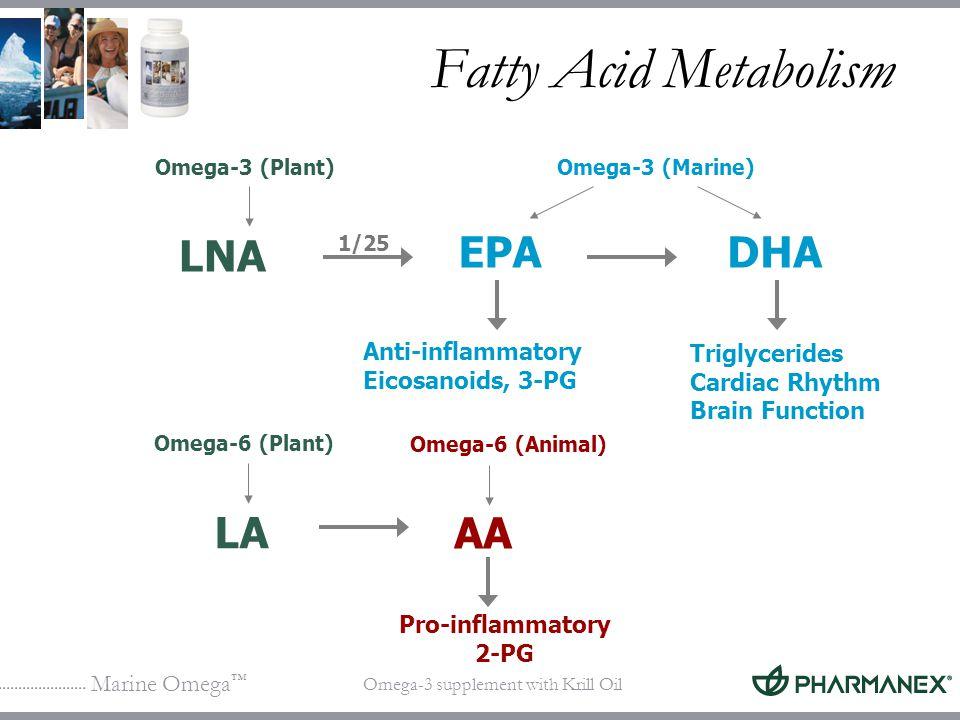 Fatty Acid Metabolism LNA EPA DHA LA AA Anti-inflammatory