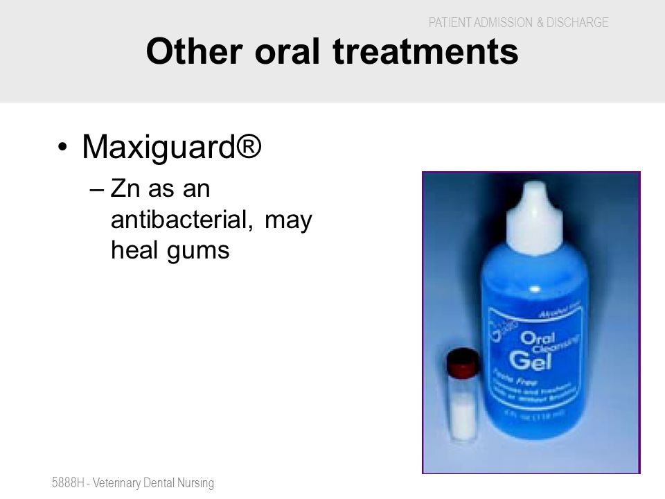 Other oral treatments Maxiguard® Zn as an antibacterial, may heal gums