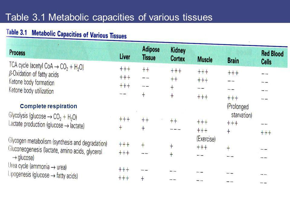Table 3.1 Metabolic capacities of various tissues