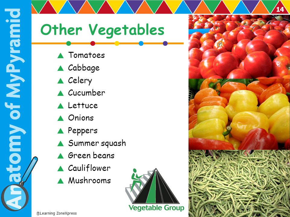 Other Vegetables Tomatoes Cabbage Celery Cucumber Lettuce Onions