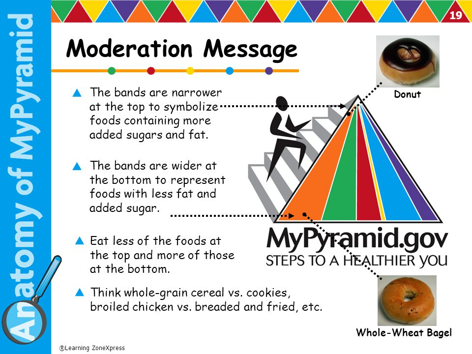 Moderation Message Donut. The bands are narrower at the top to symbolize foods containing more added sugars and fat.