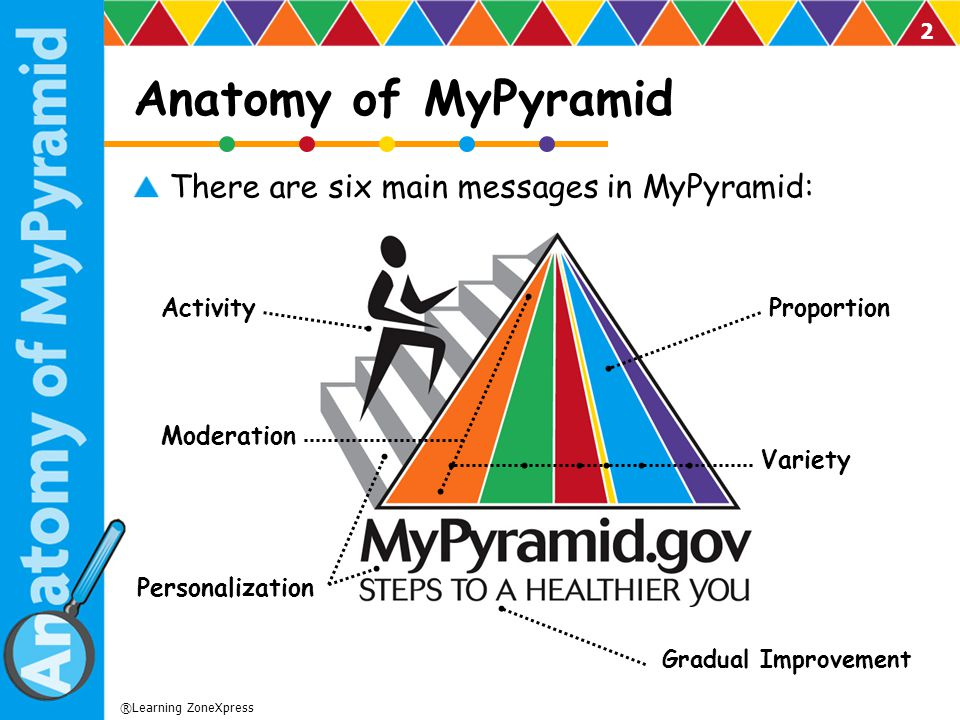 Anatomy of MyPyramid There are six main messages in MyPyramid: