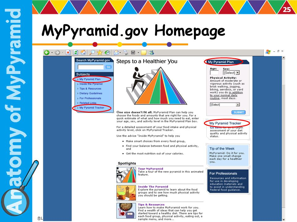 MyPyramid.gov Homepage