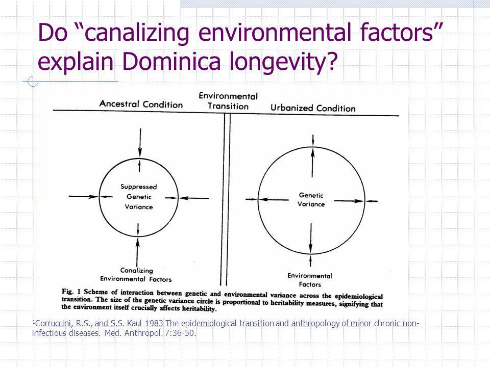 Do canalizing environmental factors explain Dominica longevity