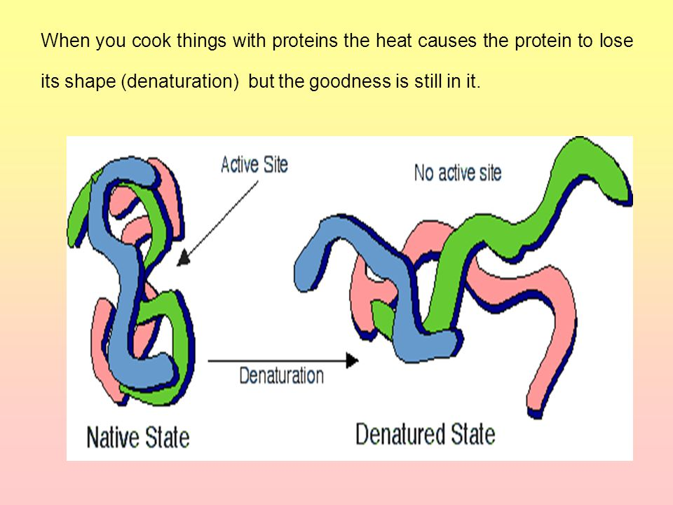 When you cook things with proteins the heat causes the protein to lose its shape (denaturation) but the goodness is still in it.