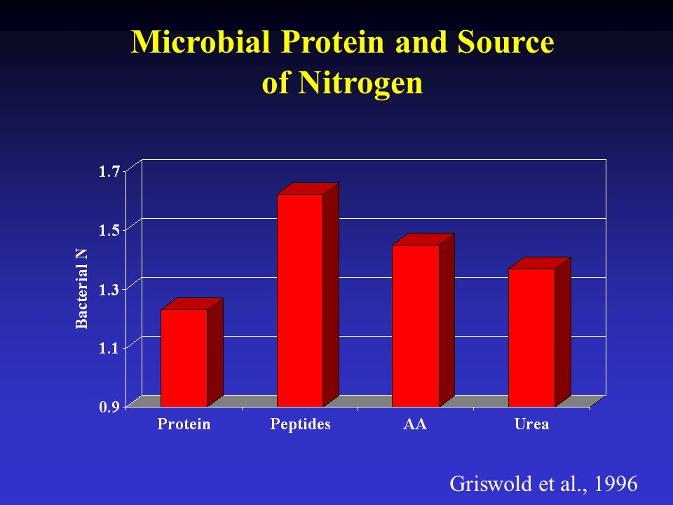 Microbial Protein and Source of Nitrogen