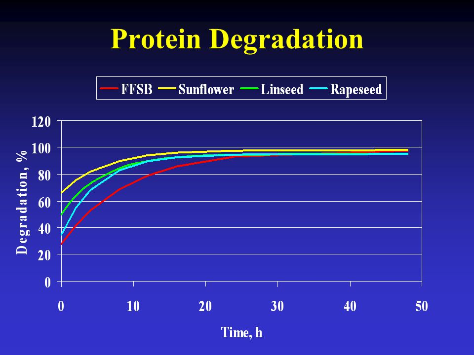Protein Degradation
