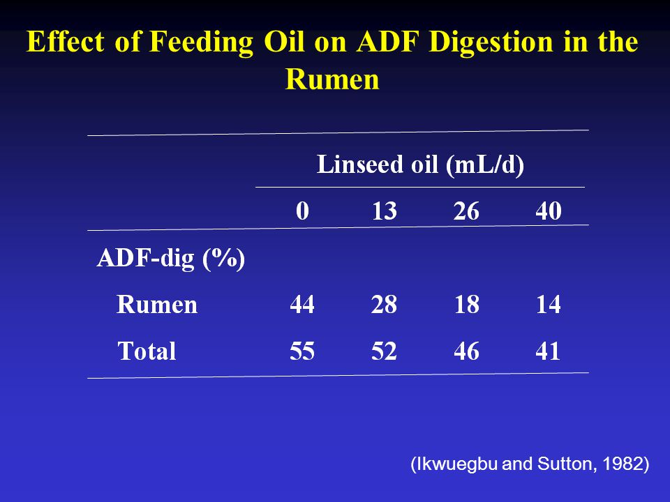 Effect of Feeding Oil on ADF Digestion in the Rumen
