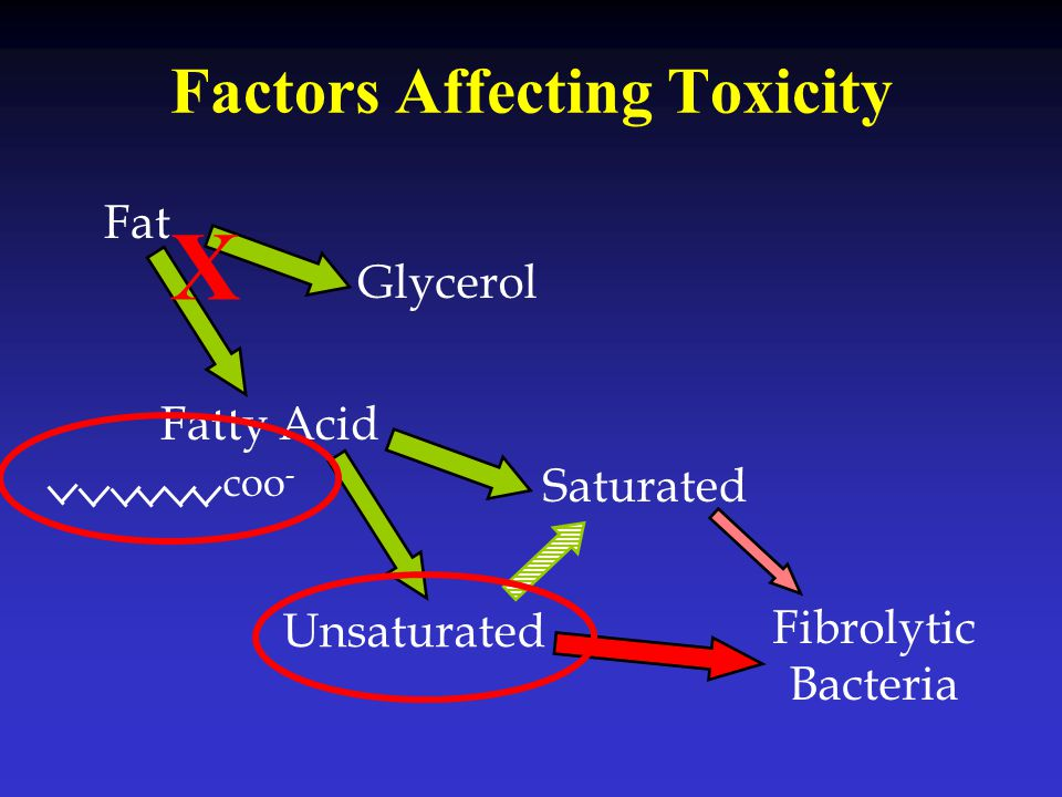 Factors Affecting Toxicity