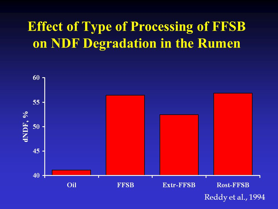 Effect of Type of Processing of FFSB on NDF Degradation in the Rumen
