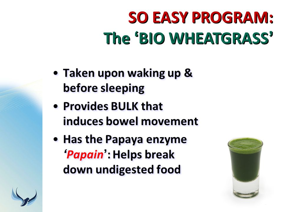 SO EASY PROGRAM: The 'BIO WHEATGRASS'