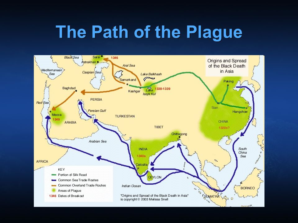 The Path of the Plague