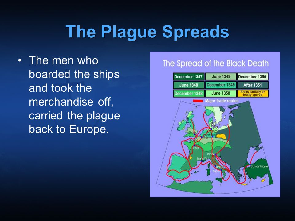 The Plague Spreads The men who boarded the ships and took the merchandise off, carried the plague back to Europe.