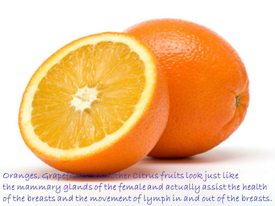 Oranges, Grapefruits, and other Citrus fruits look just like
