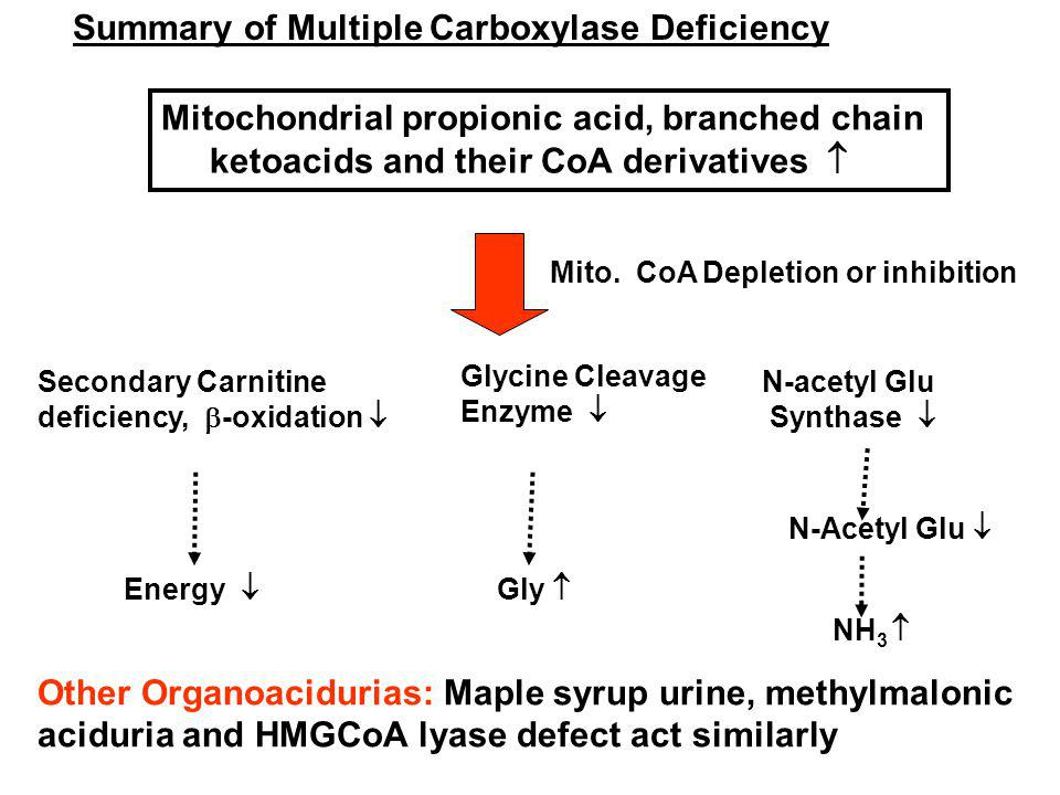 Summary of Multiple Carboxylase Deficiency