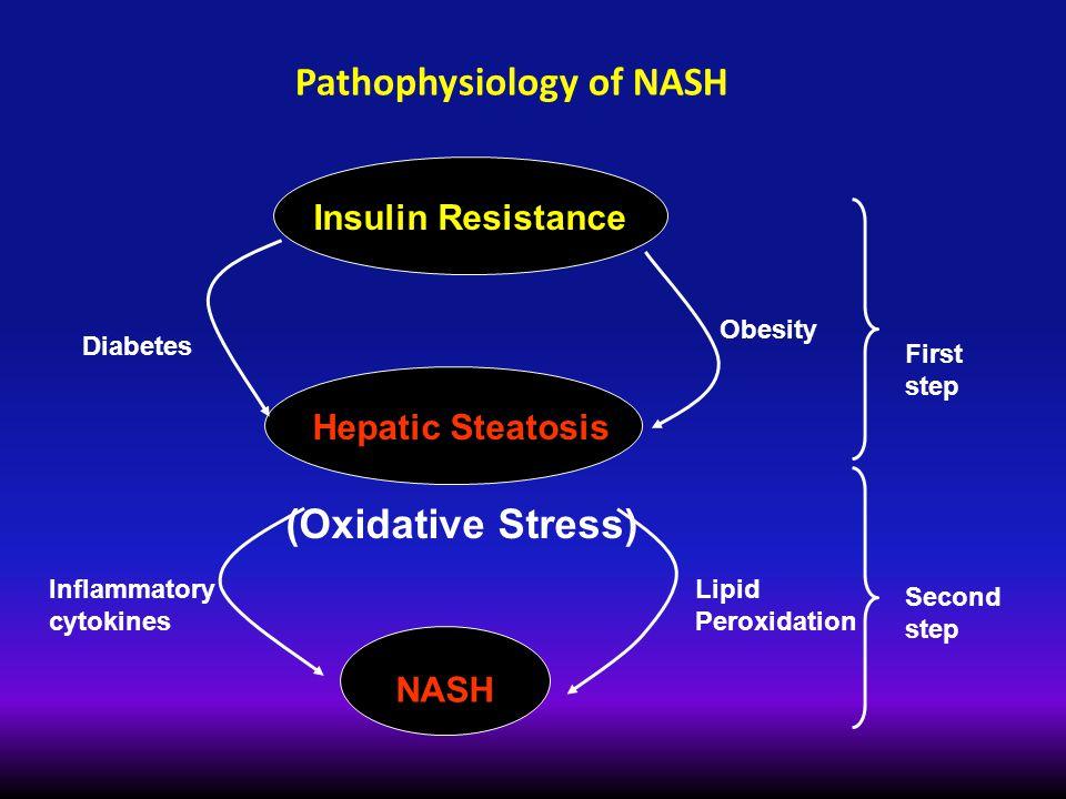 Pathophysiology of NASH