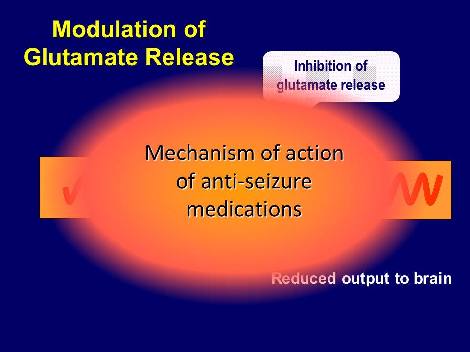 Modulation of Glutamate Release Inhibition of glutamate release