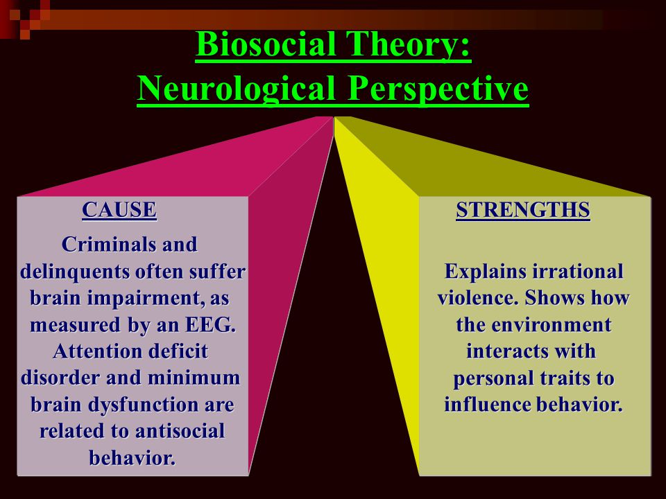 Biosocial Theory: Neurological Perspective