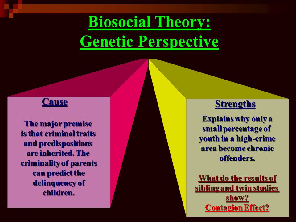 Biosocial Theory: Genetic Perspective
