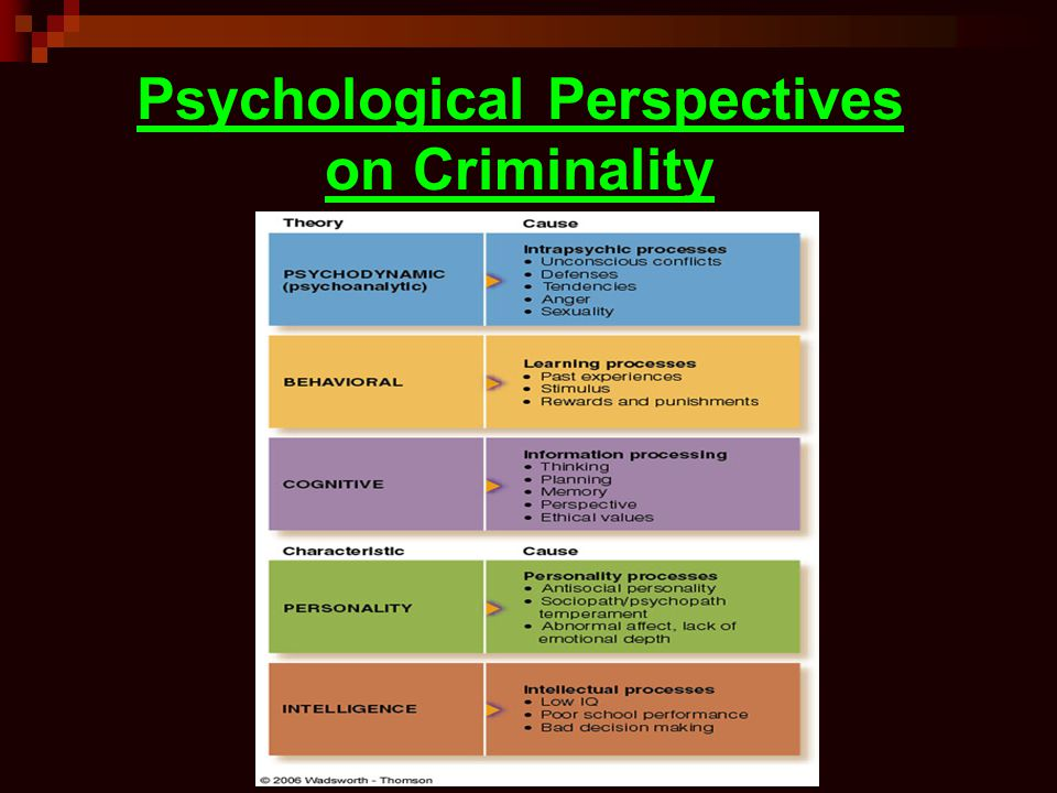 Psychological Perspectives on Criminality