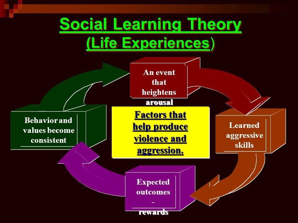 Social Learning Theory (Life Experiences)