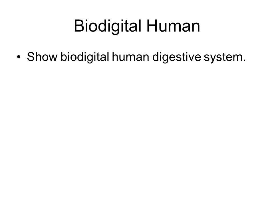 Biodigital Human Show biodigital human digestive system.