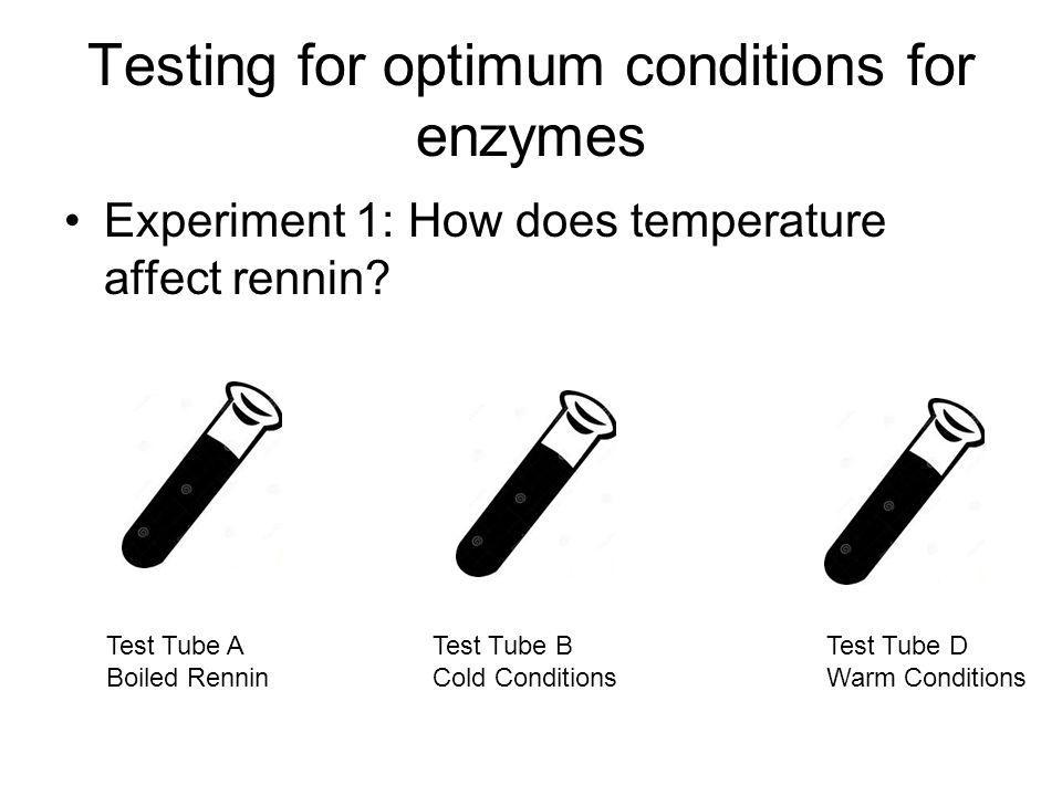 Testing for optimum conditions for enzymes