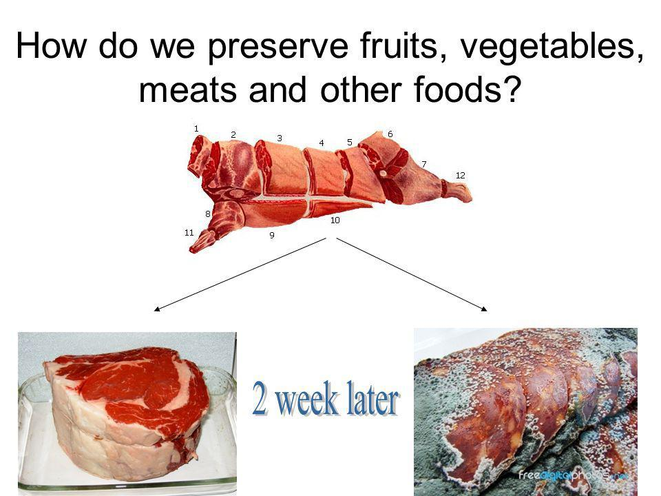 How do we preserve fruits, vegetables, meats and other foods