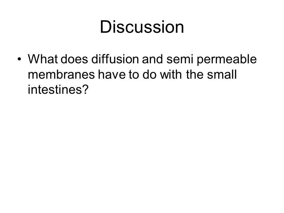 Discussion What does diffusion and semi permeable membranes have to do with the small intestines