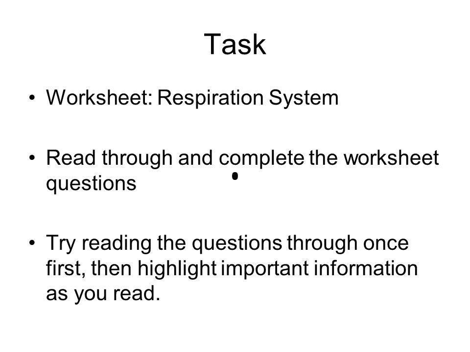 Task Worksheet: Respiration System